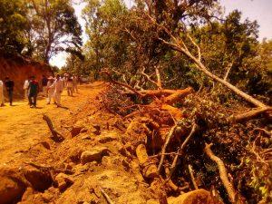 Despojo y devastacion en el Ejido de Xochisltahuaca_06