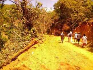 NOTA Denuncia popular por devastación en Junt de Arroyo Grande